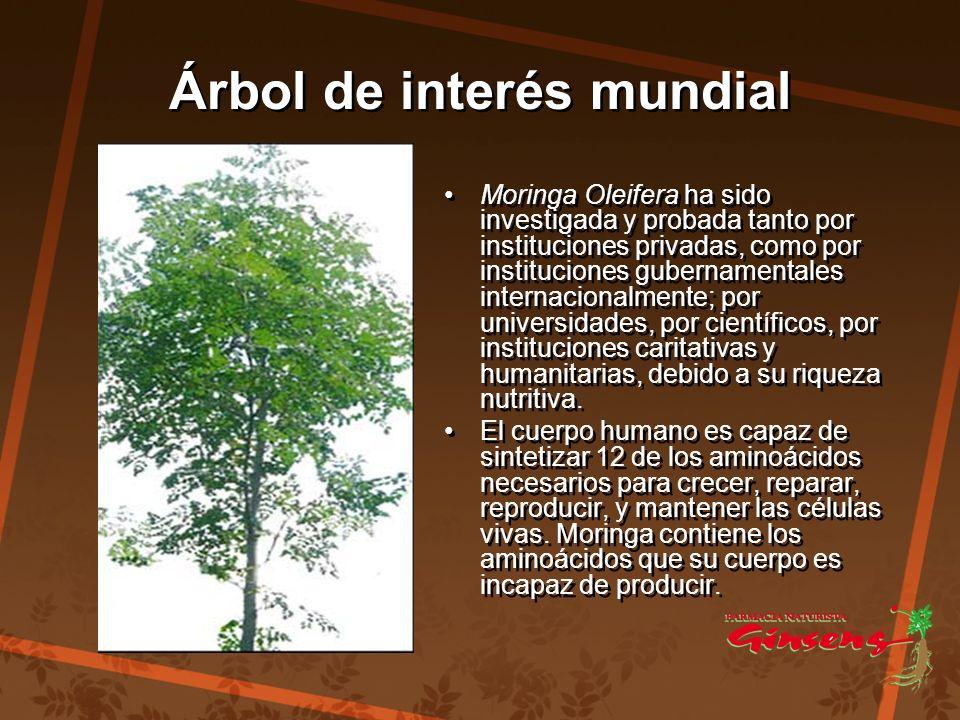 Árbol de interés mundial