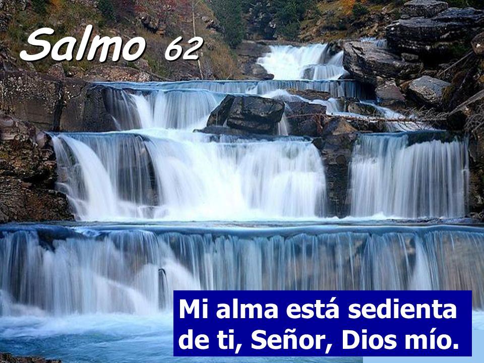 Salmo 62 Mi alma está sedienta de ti, Señor, Dios mío.