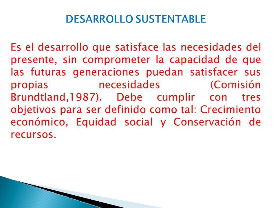 DESARROLLO SUSTENTABLE Es el desarrollo que satisface las necesidades del presente, sin comprometer la capacidad de que las futuras generaciones puedan satisfacer sus propias necesidades (Comisión Brundtland,1987).
