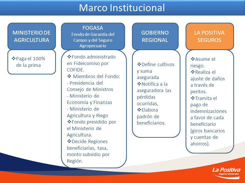 Marco Institucional MINISTERIO DE AGRICULTURA FOGASA GOBIERNO REGIONAL