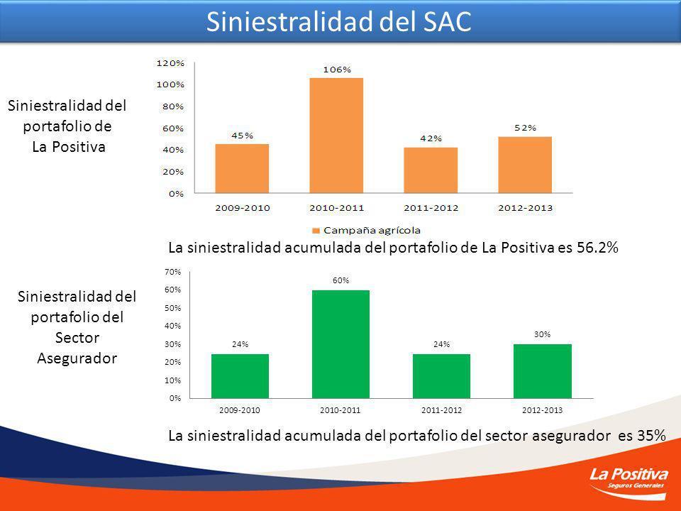 Siniestralidad del SAC