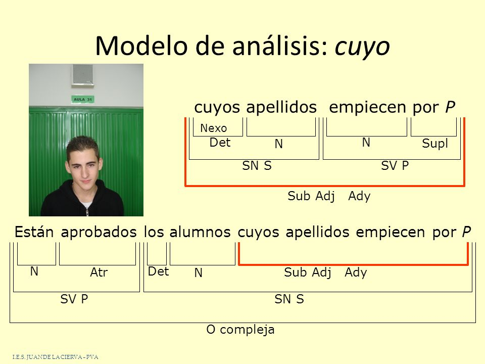 Modelo de análisis: cuyo