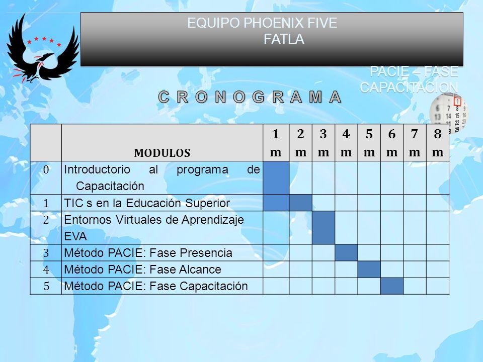 EQUIPO PHOENIX FIVE FATLA