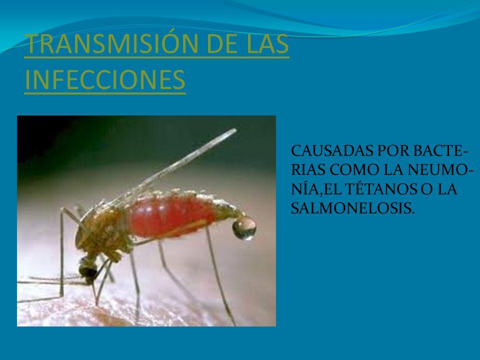 TRANSMISIÓN DE LAS INFECCIONES