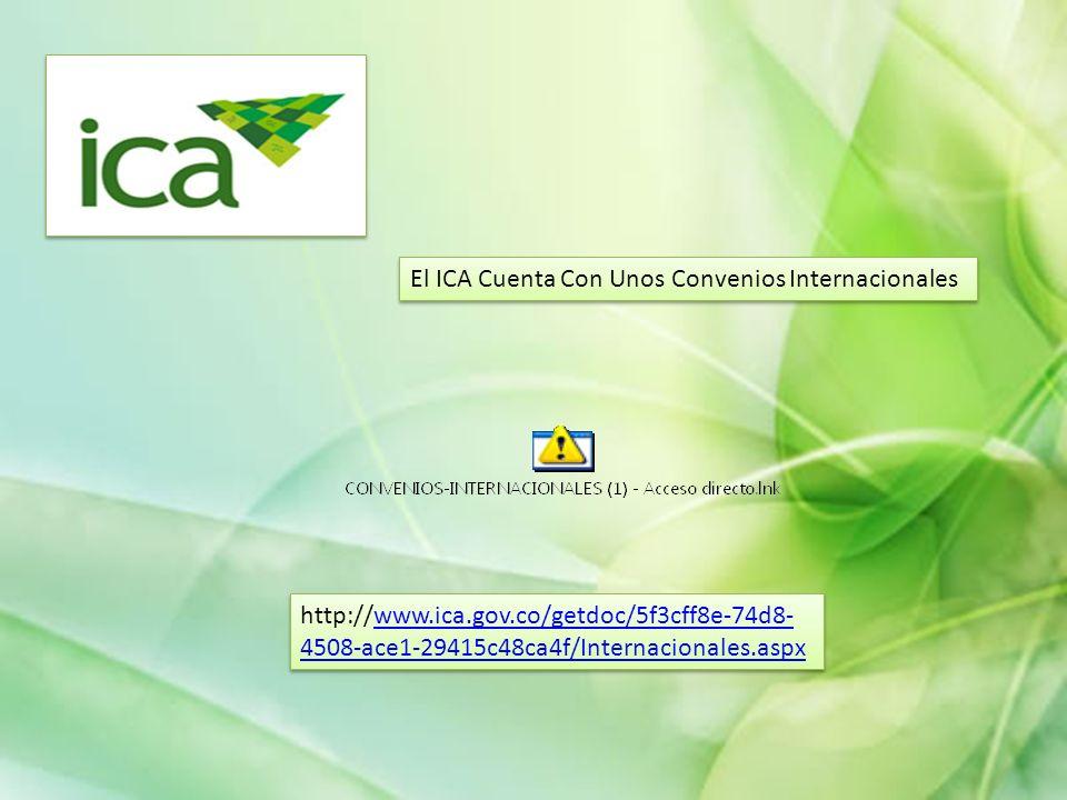 El ICA Cuenta Con Unos Convenios Internacionales