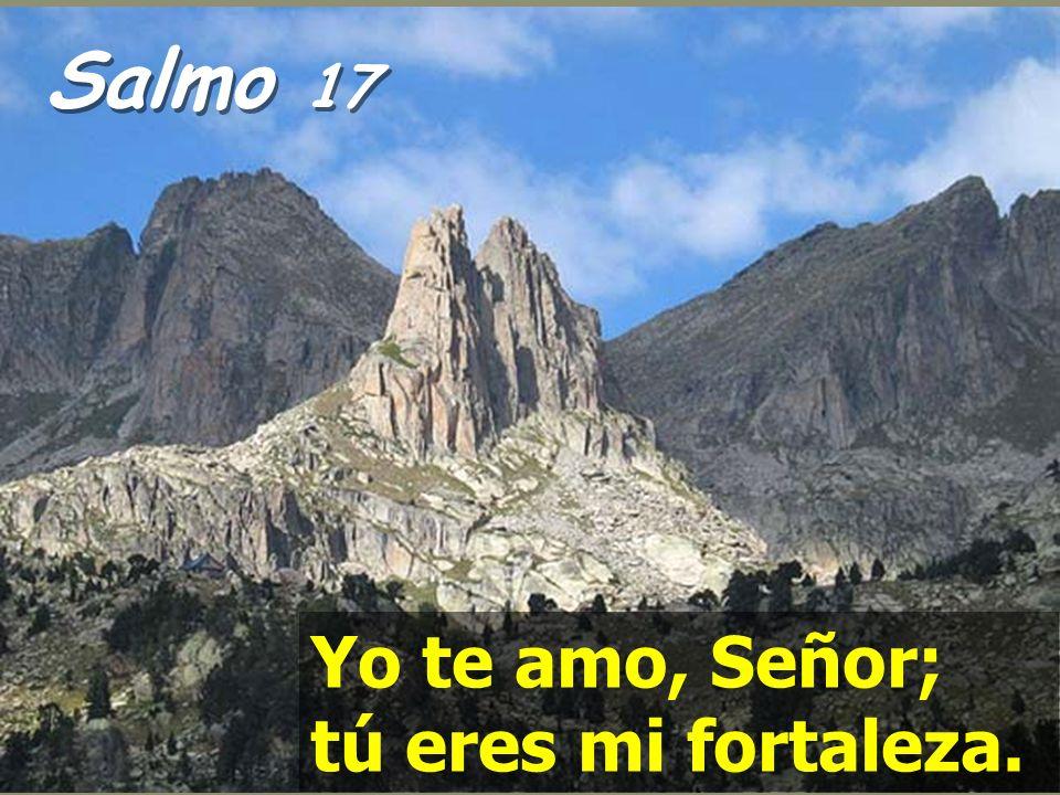 Salmo 17 Yo te amo, Señor; tú eres mi fortaleza.