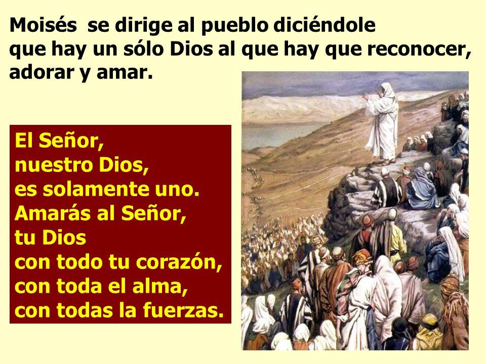 Moisés se dirige al pueblo diciéndole que hay un sólo Dios al que hay que reconocer, adorar y amar.