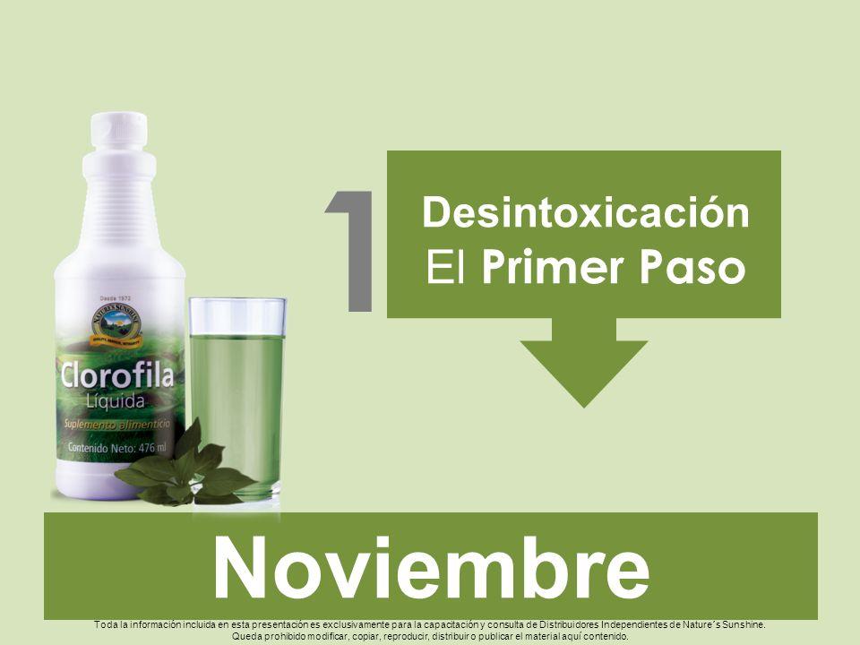 1 Noviembre El Primer Paso Desintoxicación