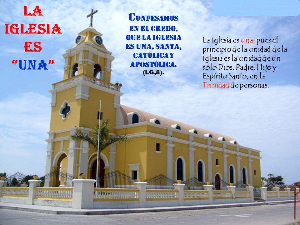 La Iglesia es una Confesamos en el Credo, que la Iglesia es una, Santa, Católica y Apostólica. (LG,8).