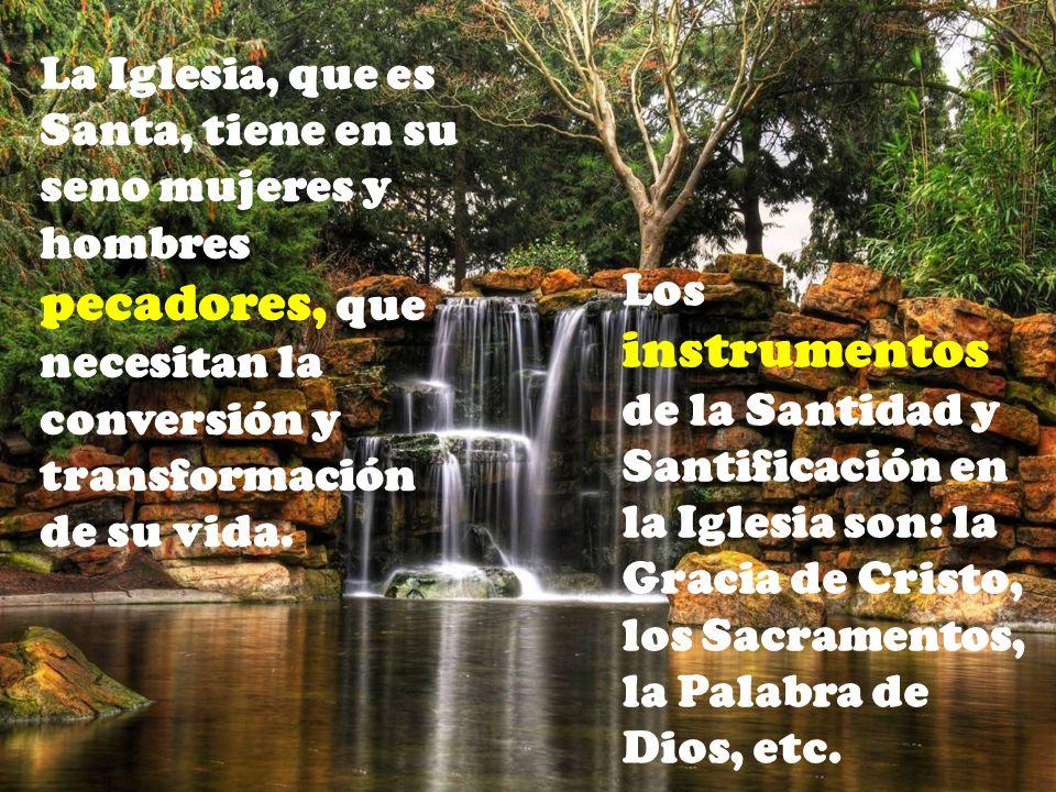 La Iglesia, que es Santa, tiene en su seno mujeres y hombres pecadores, que necesitan la conversión y transformación de su vida.