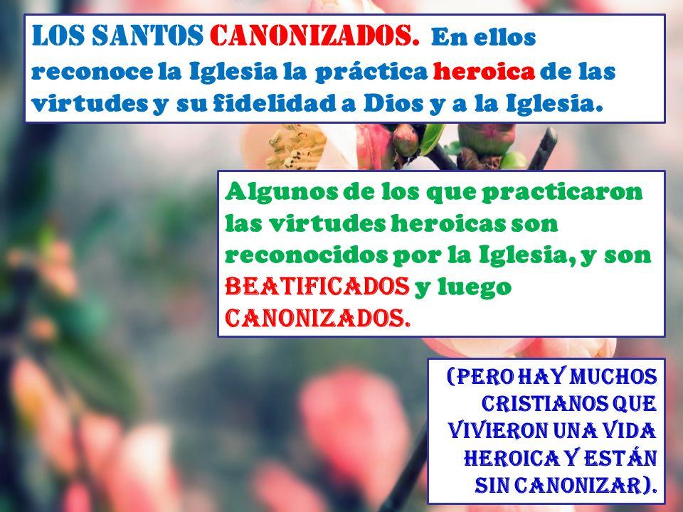Los Santos canonizados