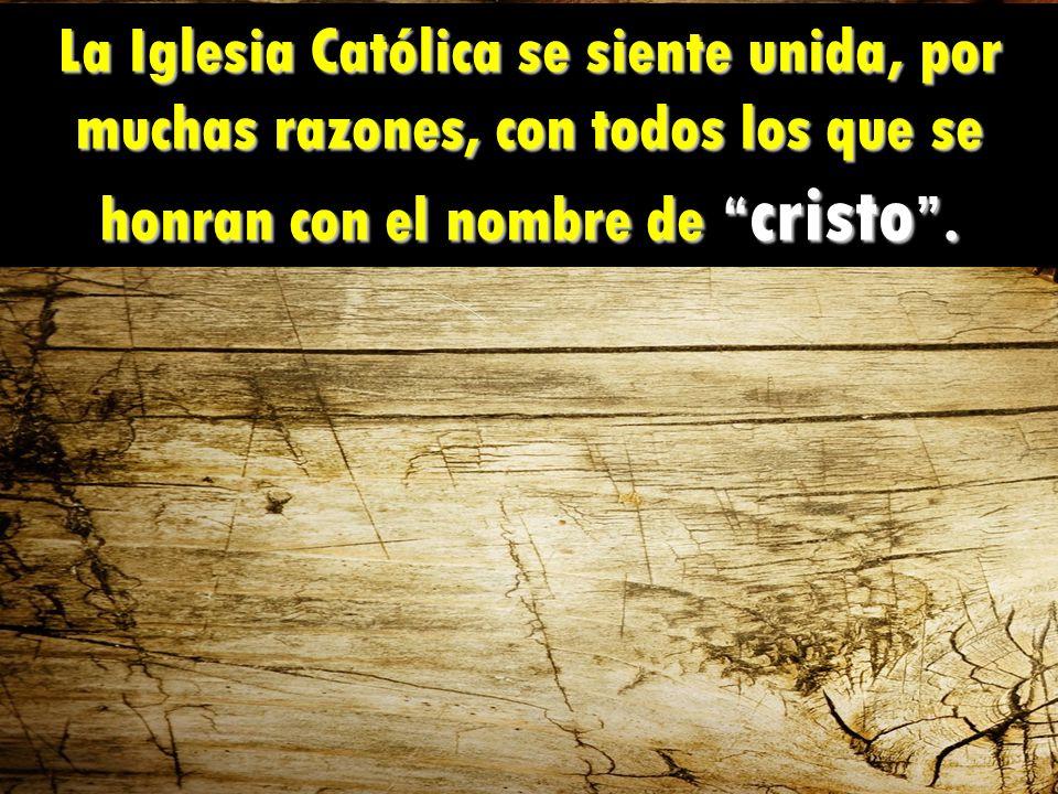 La Iglesia Católica se siente unida, por muchas razones, con todos los que se honran con el nombre de cristo .