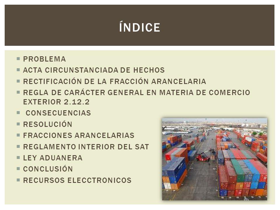 Índice PROBLEMA ACTA CIRCUNSTANCIADA DE HECHOS