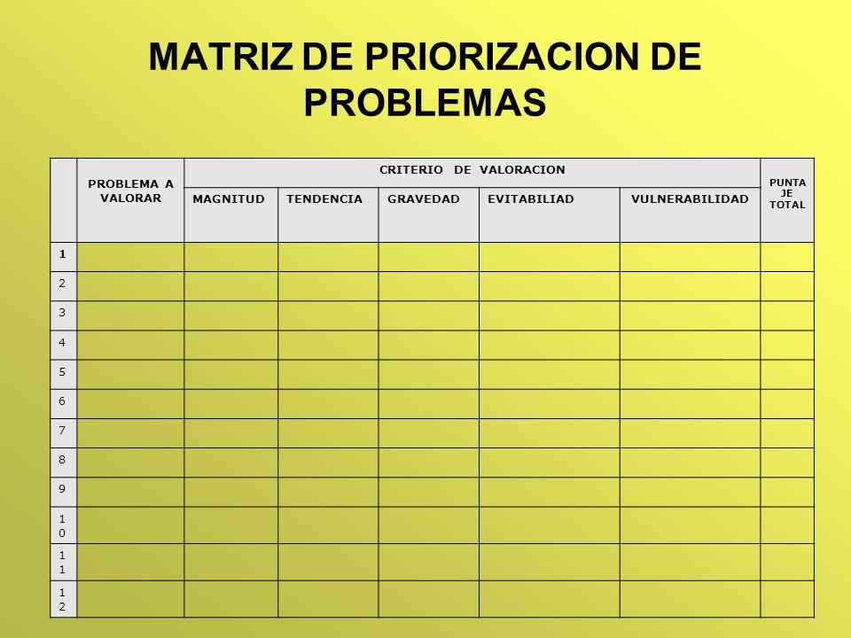 MATRIZ DE PRIORIZACION DE PROBLEMAS