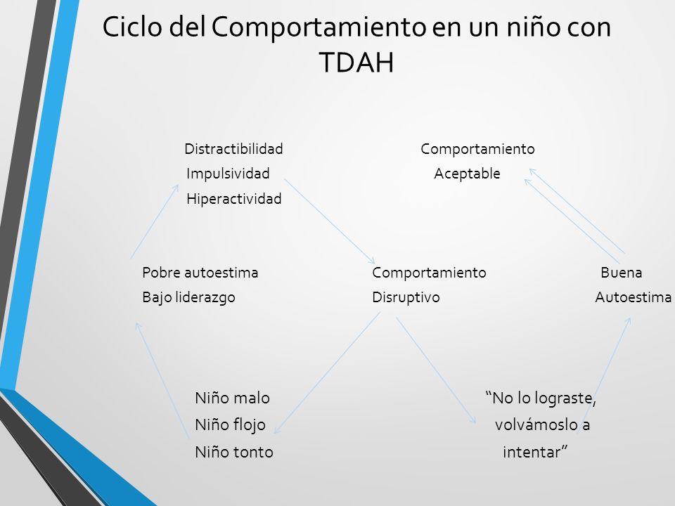 Ciclo del Comportamiento en un niño con TDAH