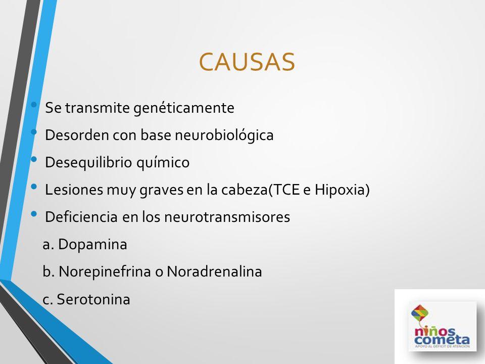 CAUSAS Se transmite genéticamente Desorden con base neurobiológica