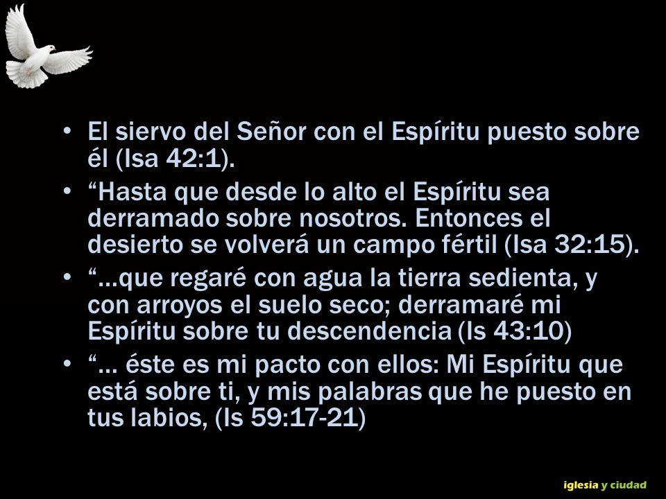 El siervo del Señor con el Espíritu puesto sobre él (Isa 42:1).