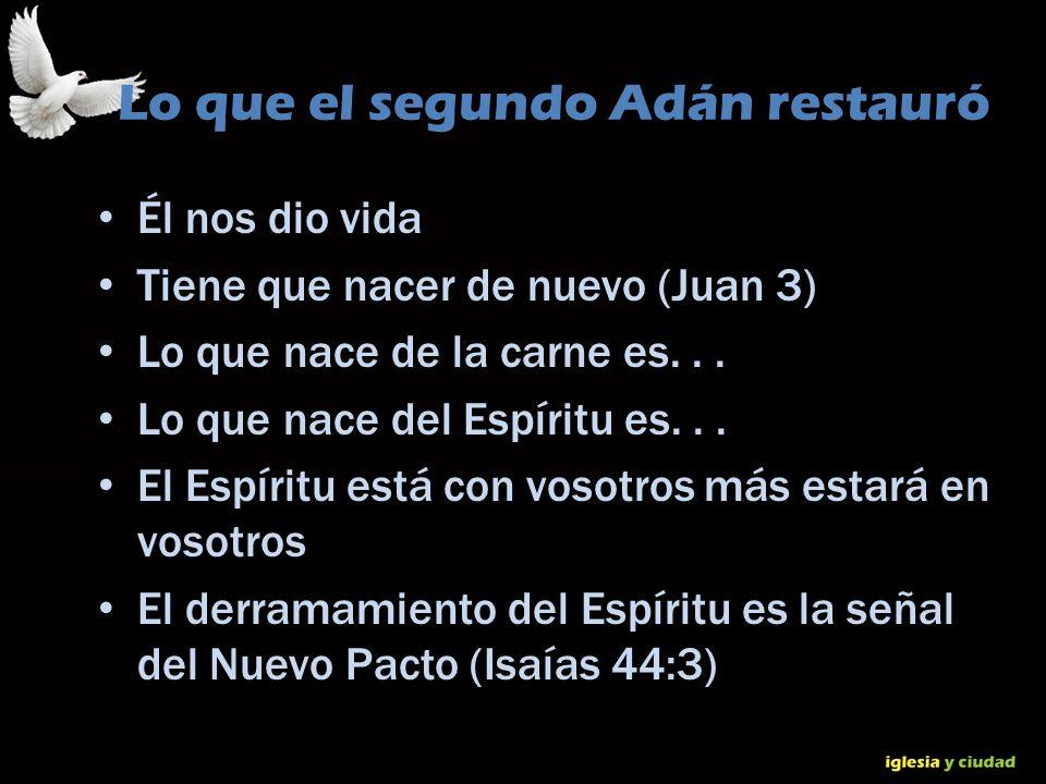 Lo que el segundo Adán restauró