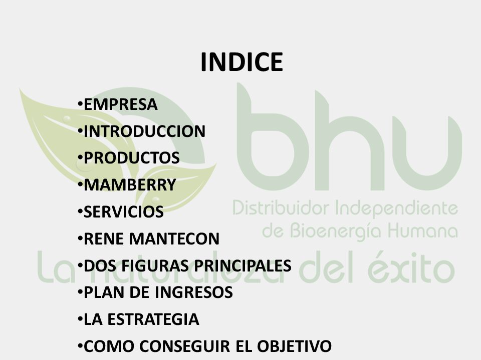 INDICE EMPRESA INTRODUCCION PRODUCTOS MAMBERRY SERVICIOS RENE MANTECON