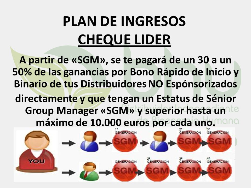 PLAN DE INGRESOS CHEQUE LIDER