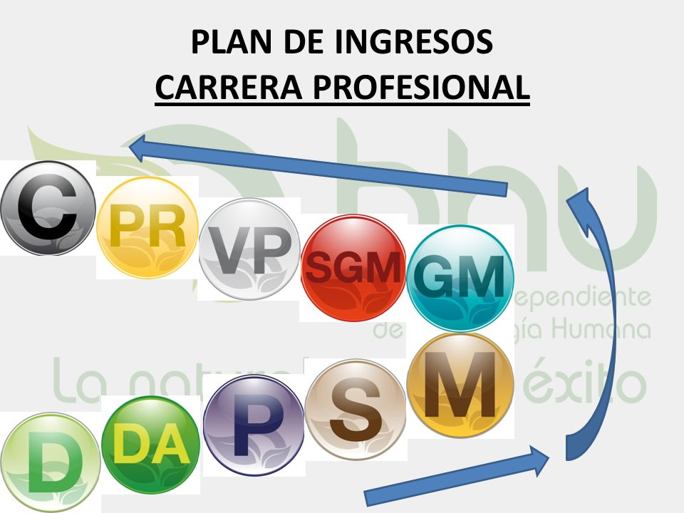 PLAN DE INGRESOS CARRERA PROFESIONAL