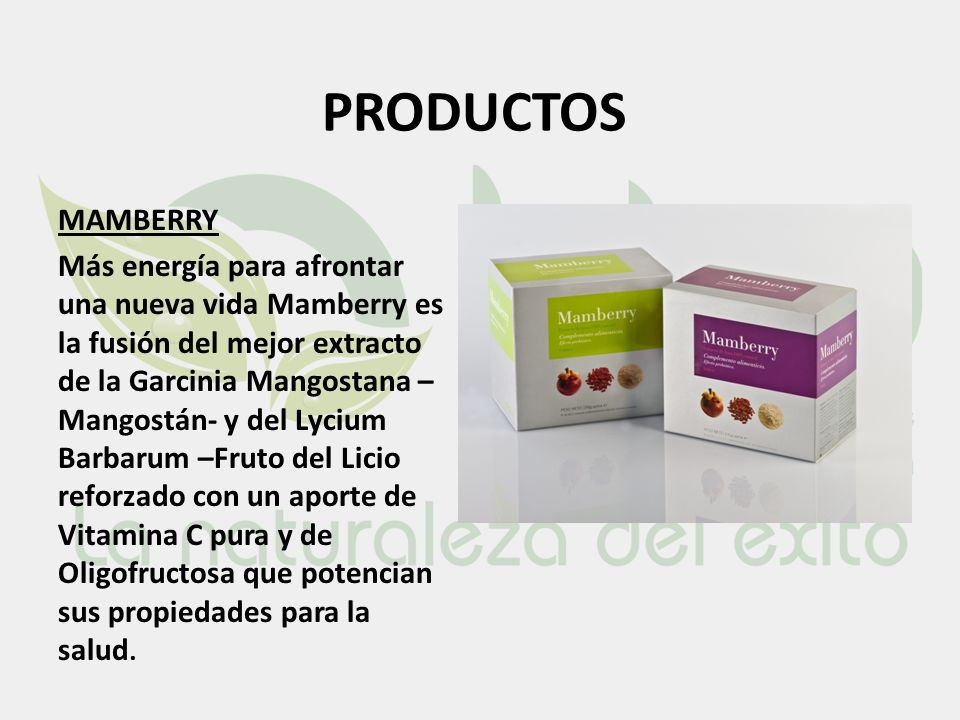 PRODUCTOS MAMBERRY.