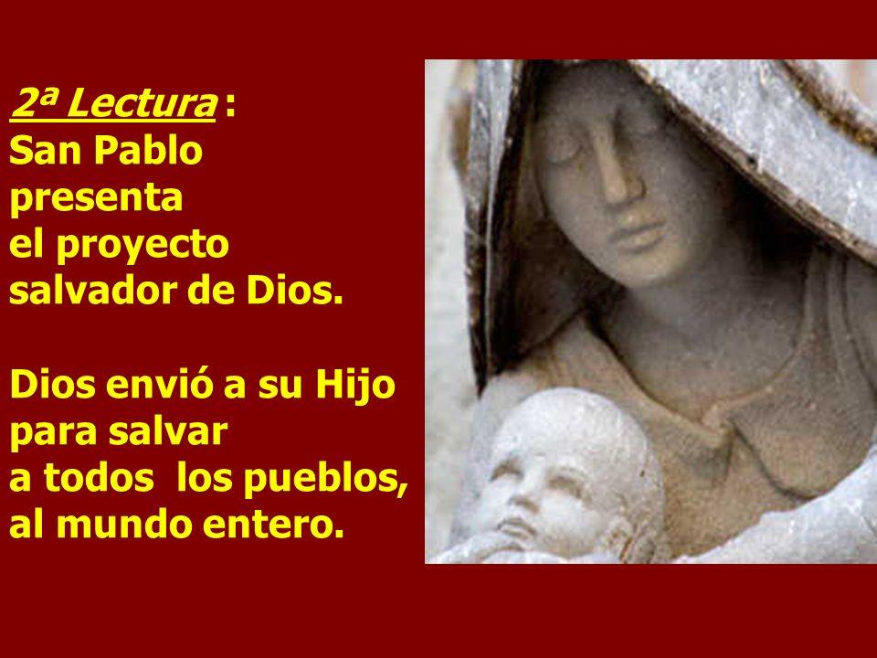 2ª Lectura : San Pablo presenta el proyecto salvador de Dios.