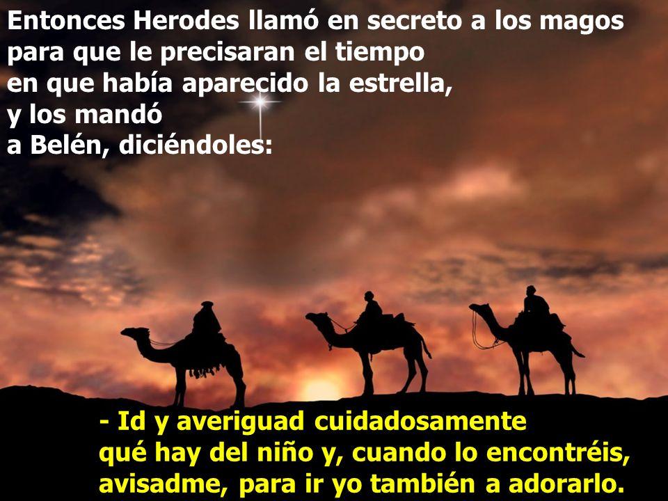 Entonces Herodes llamó en secreto a los magos para que le precisaran el tiempo en que había aparecido la estrella, y los mandó a Belén, diciéndoles: