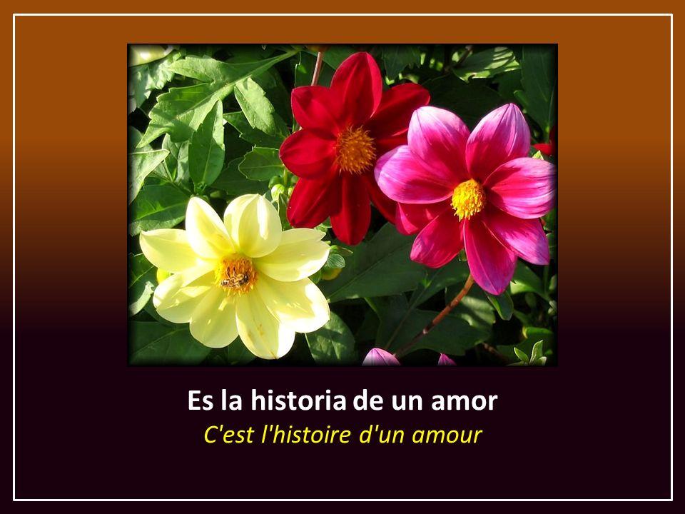 Es la historia de un amor C est l histoire d un amour