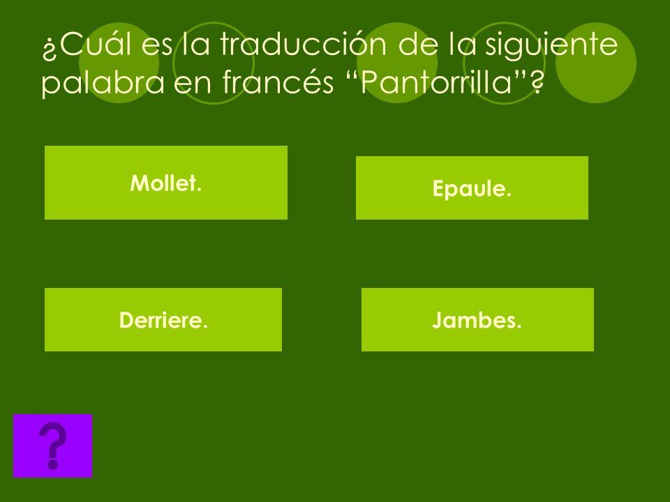 ¿Cuál es la traducción de la siguiente palabra en francés Pantorrilla