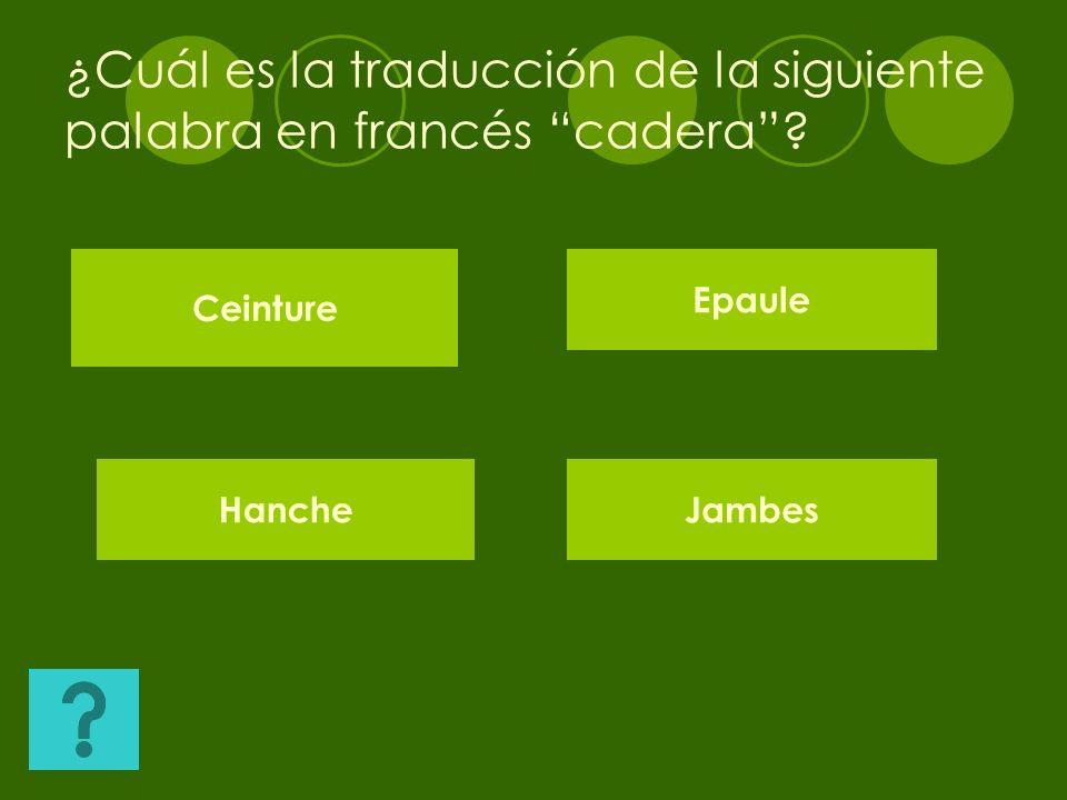 ¿Cuál es la traducción de la siguiente palabra en francés cadera