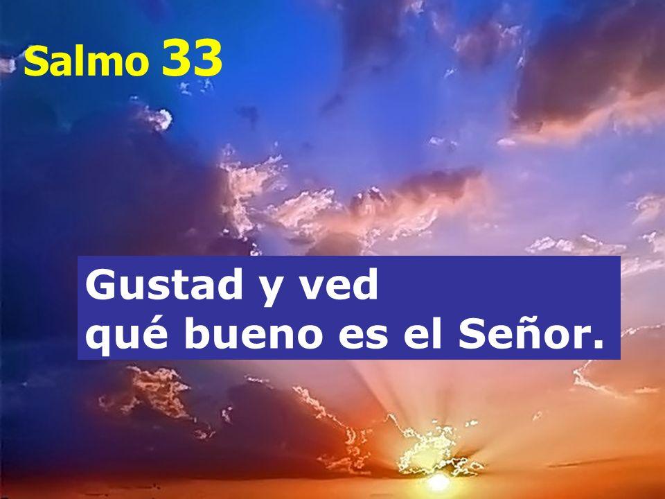 Salmo 33 Gustad y ved qué bueno es el Señor.