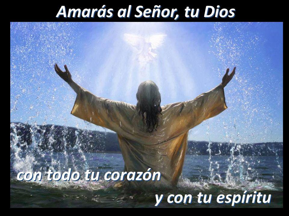 Amarás al Señor, tu Dios con todo tu corazón y con tu espíritu