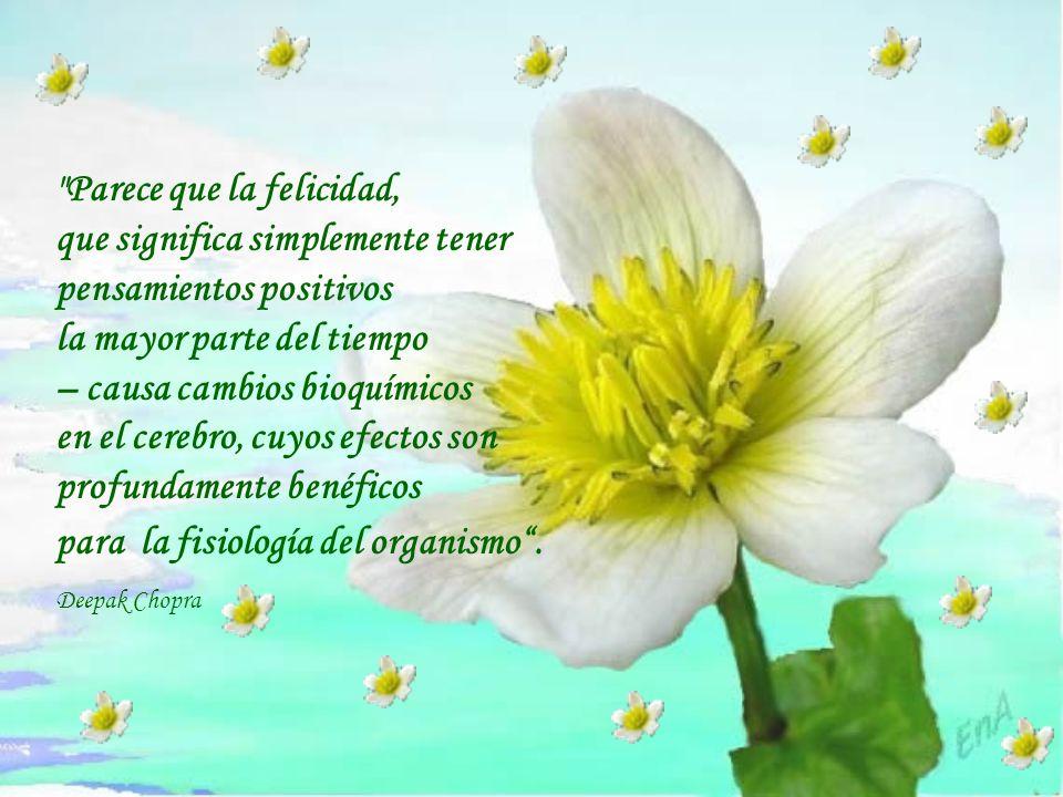 Parece que la felicidad, que significa simplemente tener pensamientos positivos la mayor parte del tiempo – causa cambios bioquímicos en el cerebro, cuyos efectos son profundamente benéficos para la fisiología del organismo .