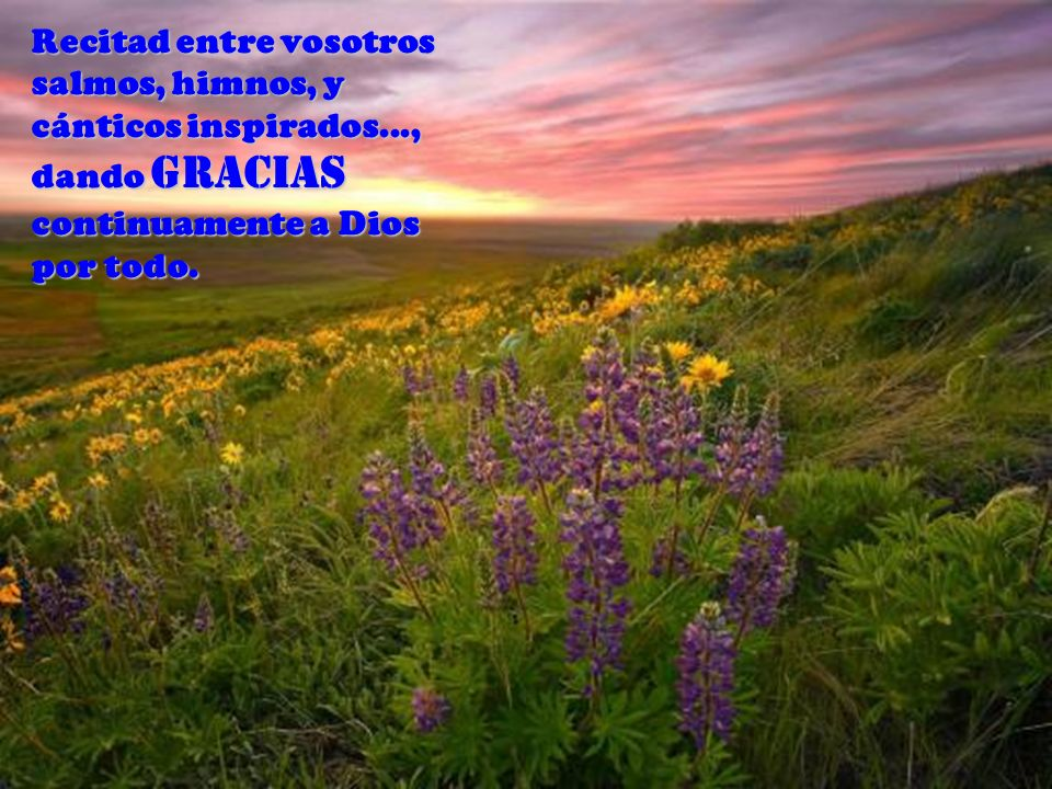 Recitad entre vosotros salmos, himnos, y cánticos inspirados