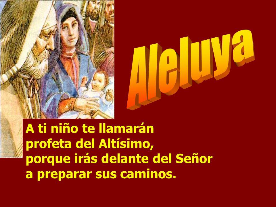 Aleluya A ti niño te llamarán profeta del Altísimo, porque irás delante del Señor a preparar sus caminos.
