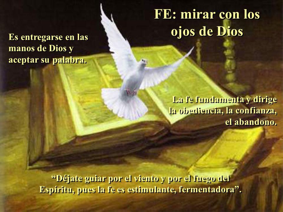 FE: mirar con los ojos de Dios