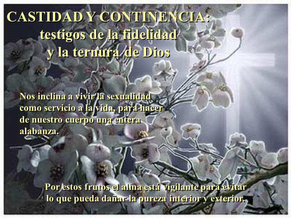 CASTIDAD Y CONTINENCIA: testigos de la fidelidad