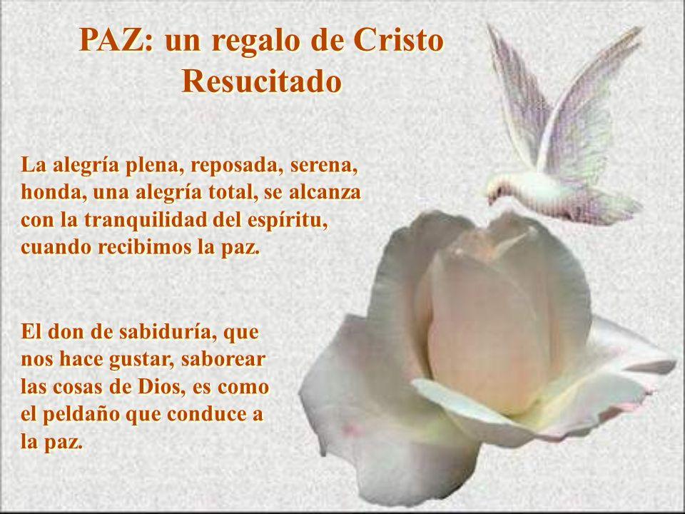 PAZ: un regalo de Cristo Resucitado