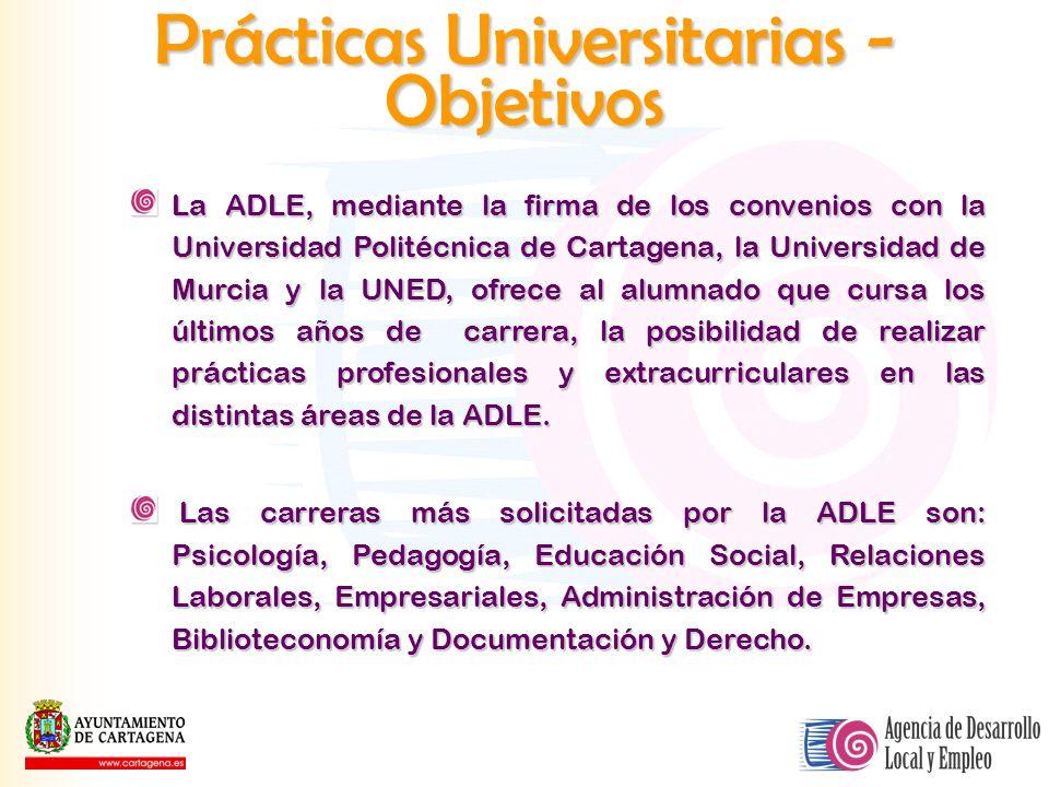 Prácticas Universitarias - Objetivos