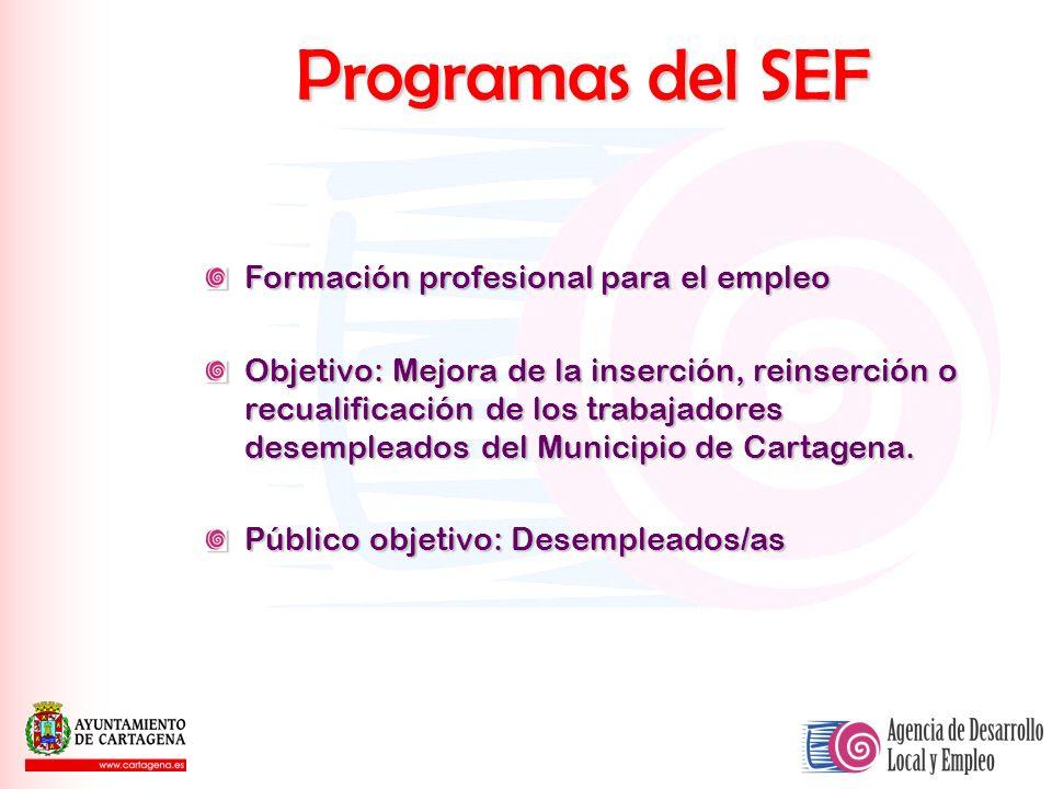 Programas del SEF Formación profesional para el empleo