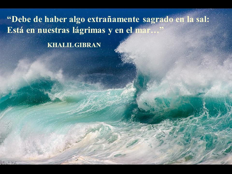Debe de haber algo extrañamente sagrado en la sal: Está en nuestras lágrimas y en el mar…
