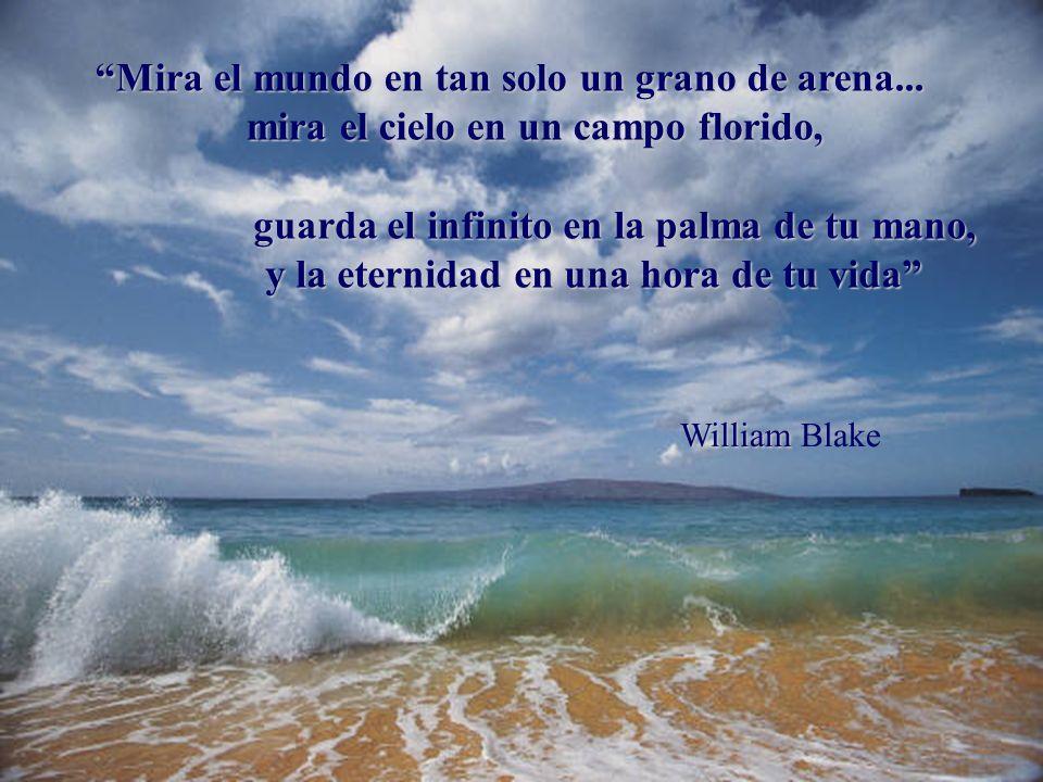 Mira el mundo en tan solo un grano de arena...