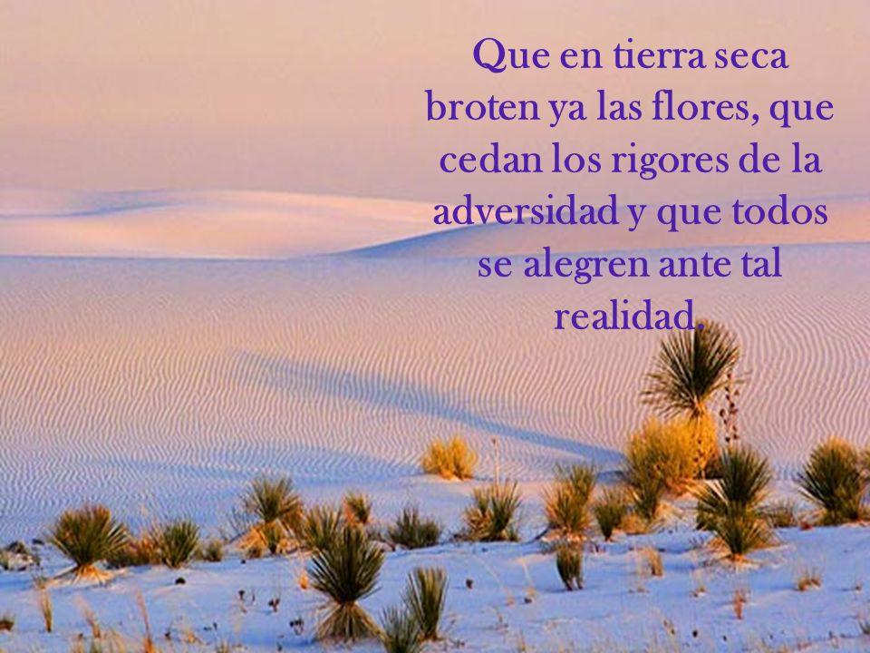 Que en tierra seca broten ya las flores, que cedan los rigores de la adversidad y que todos se alegren ante tal realidad.