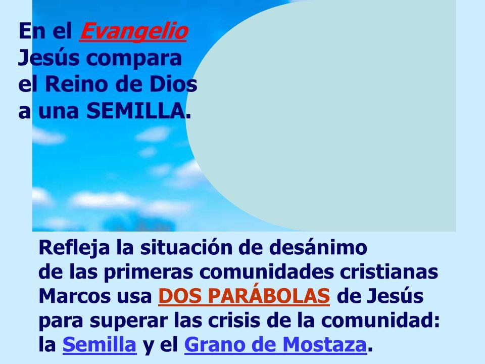 En el Evangelio Jesús compara el Reino de Dios a una SEMILLA.