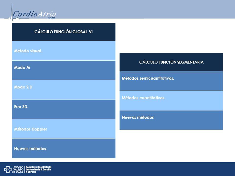CÁLCULO FUNCIÓN GLOBAL VI CÁLCULO FUNCIÓN SEGMENTARIA