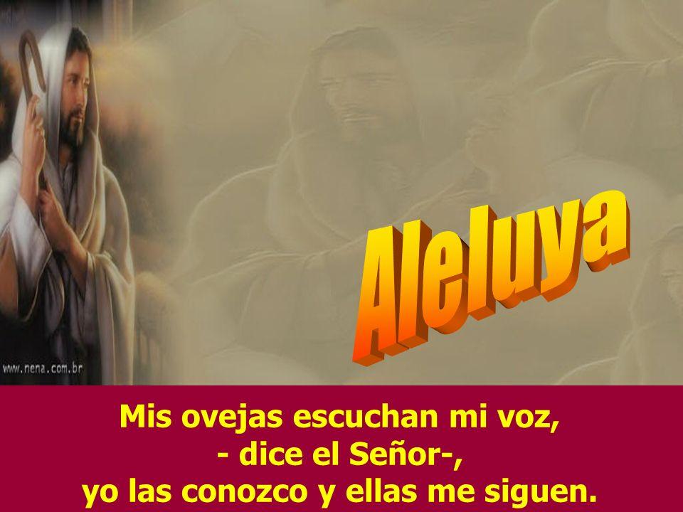 Aleluya