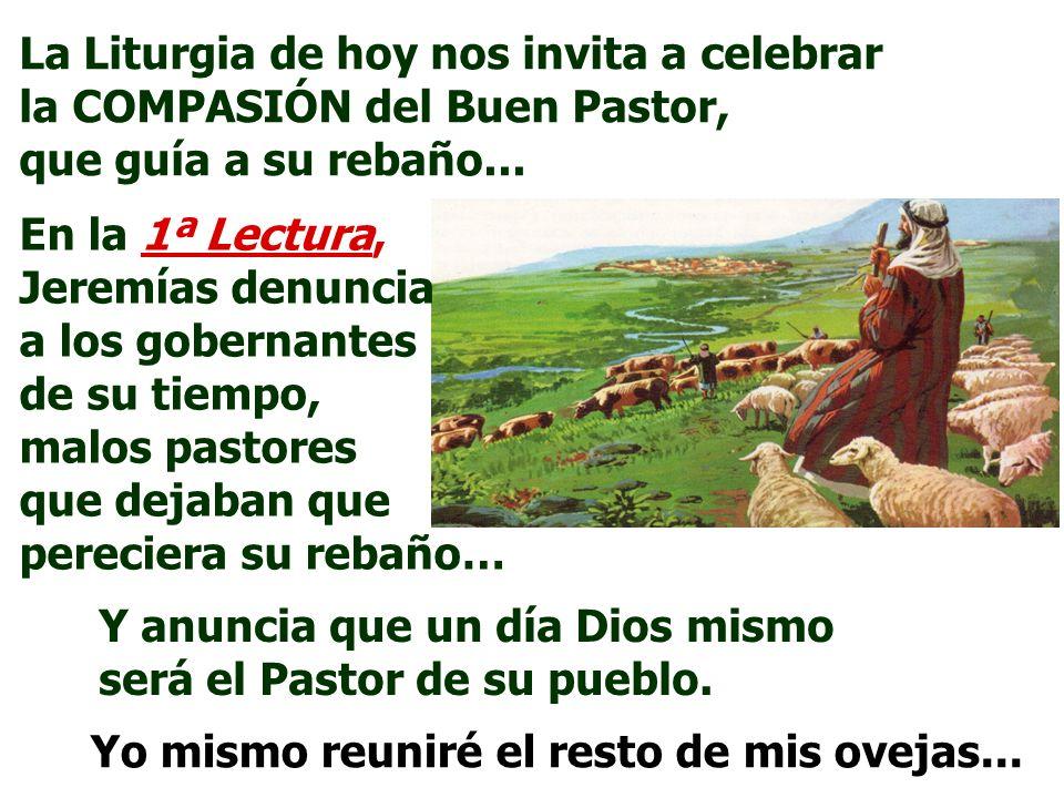 La Liturgia de hoy nos invita a celebrar