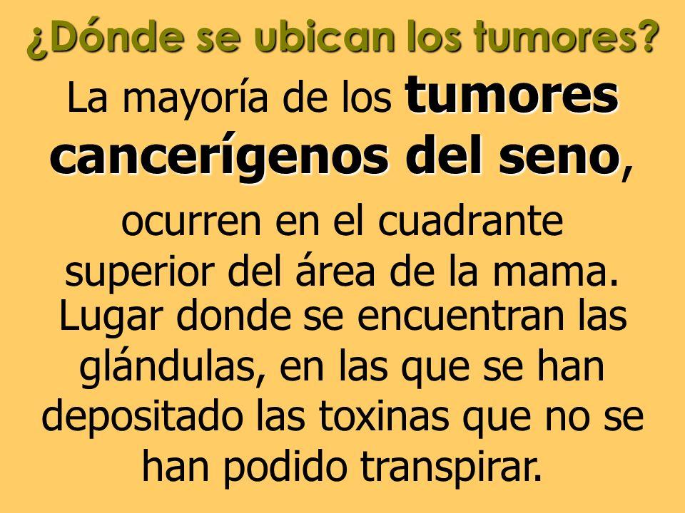 ¿Dónde se ubican los tumores