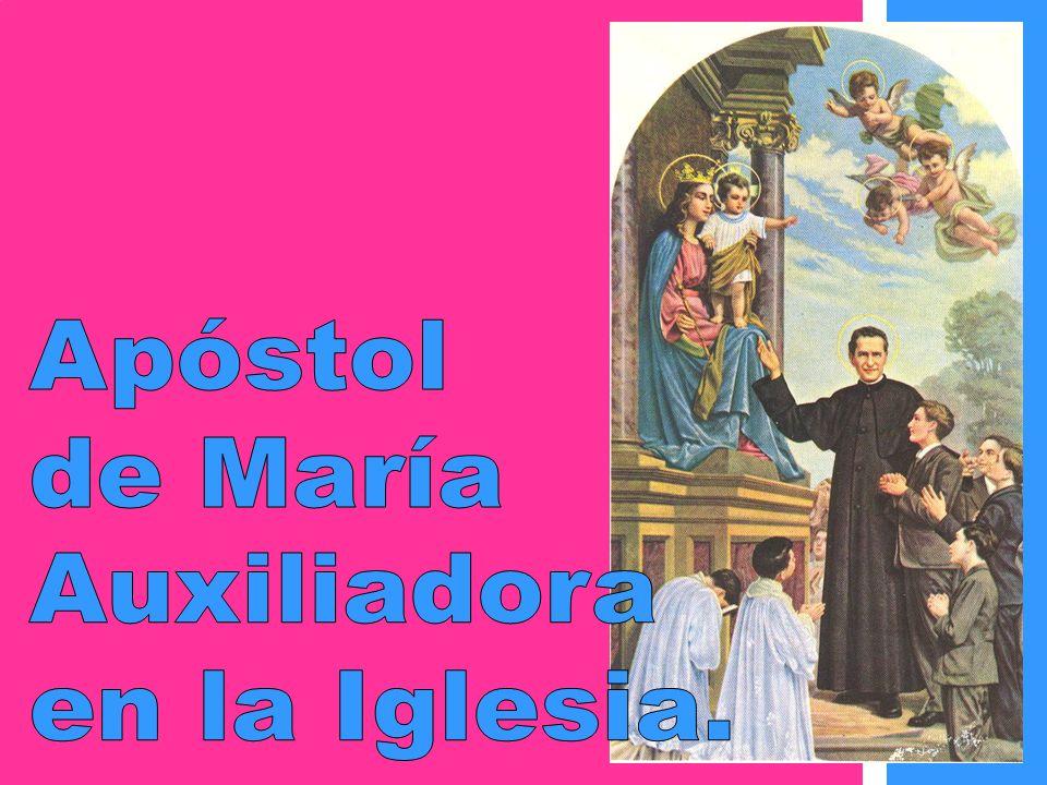 Apóstol de María Auxiliadora en la Iglesia.